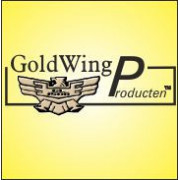 GoldWing electronica